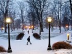Please let it snow... Prayer answered. (Phyllis Graber Jensen/Bates College)