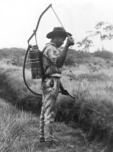 The battle against malaria and mosquitoes has been going on for hundreds of years. This undated photo from the early 1900s shows a man spray oil to control mosquitos. (ibrary of Congress Prints and Photographs Division)