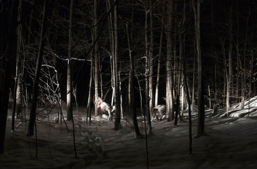 """Shadows of a Magnitude, No. 3,"" a 2016 inkjet print by Julian Bardin '16."