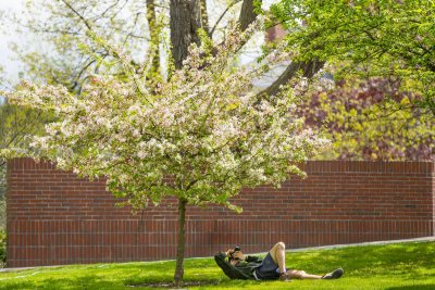 A photographer flattens himself on the walkway to Ladd Library to capture spring beauty. (Phyllis Graber Jensen/Bates College)