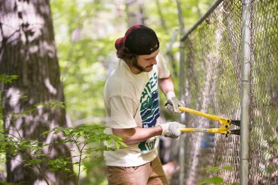 George Fiske '19 of West Hartford, Conn., cuts wire that holds derelict chain-link fencing to posts on Mount David during the EcoService Day project on May 21. (Phyllis Graber Jensen/Bates College)