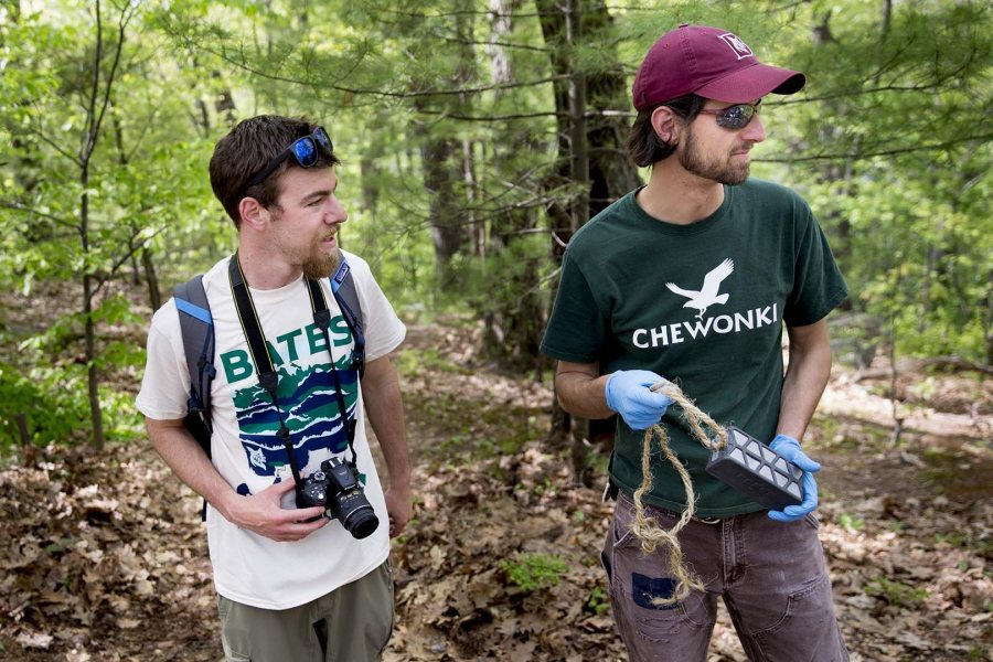 Project leader Dana Cohen-Kaplan '16 (left) and Bates sustainability manager Tom Twist confer during the EcoService Day project on Mount David on May 21. (Phyllis Graber Jensen/Bates College)