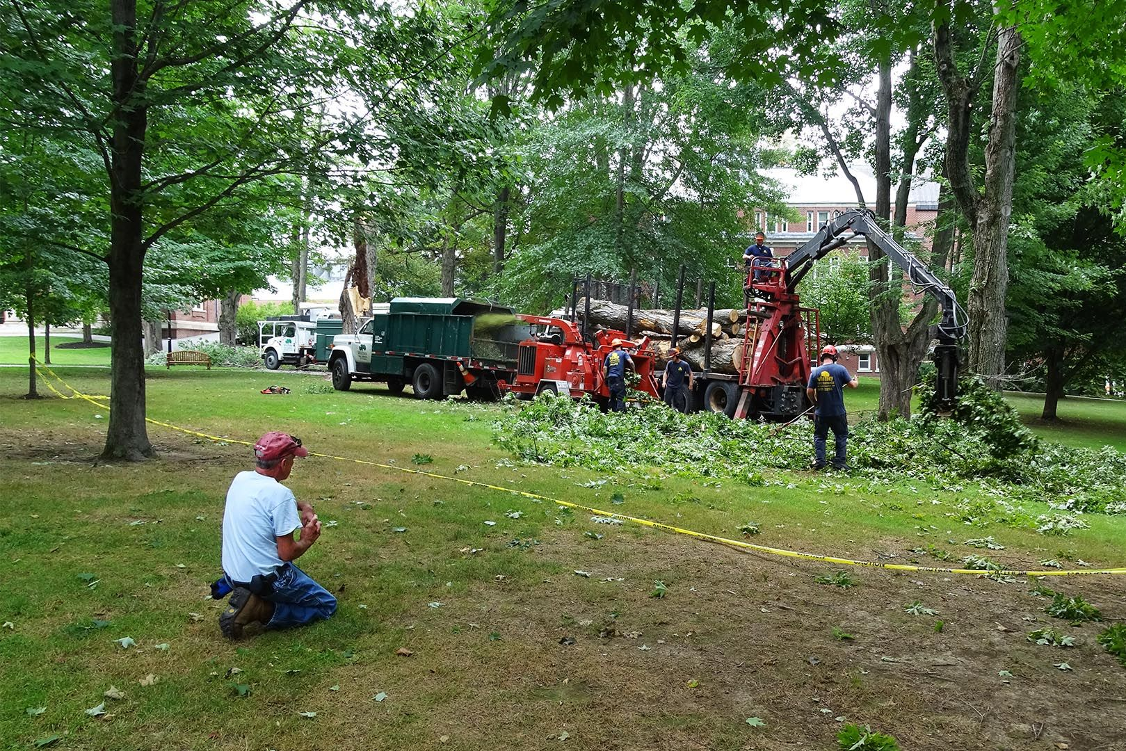 Mike Adams of the college's grounds crew takes a minute to watch the tree removal on July 29. (Jay Burns / Bates College)