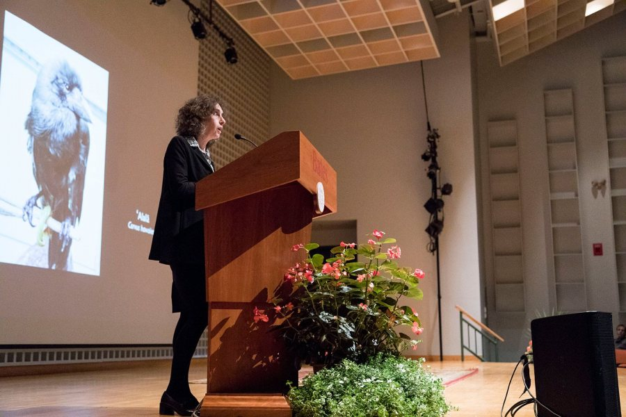 Science journalist and New Yorker staff writer Elizabeth Kolbert delivers the 2016 Otis Lecture in the Olin Arts Center on Monday evening, Oct. 24 2016. (Josh Kuckens/Bates College)