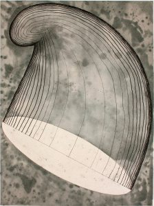 """Phrygian Cap in the Air"" is a 2012 etching with drypoint and chine-collé by Martin Puryear."