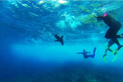 ST17_Galapagos-GOPR0224_LR