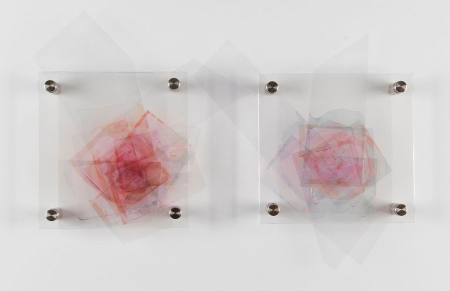 """Rosaceae,"" a 2017 piece by Ashley Pollack, is a diptych made from inkjet prints on transparency film, acrylic sheets, and stainless steel standoffs."