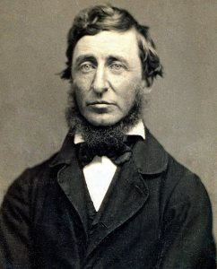 Henry David Thoreau, photographed in 1856 by Benjamin D. Maxham (Public domain via Wikimedia Commons)