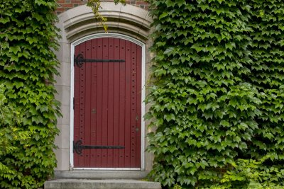 Ivy surrounds a red door on the side of the Clifton Daggett Gray Athletic Building. (Phyllis Graber Jensen/Bates College)
