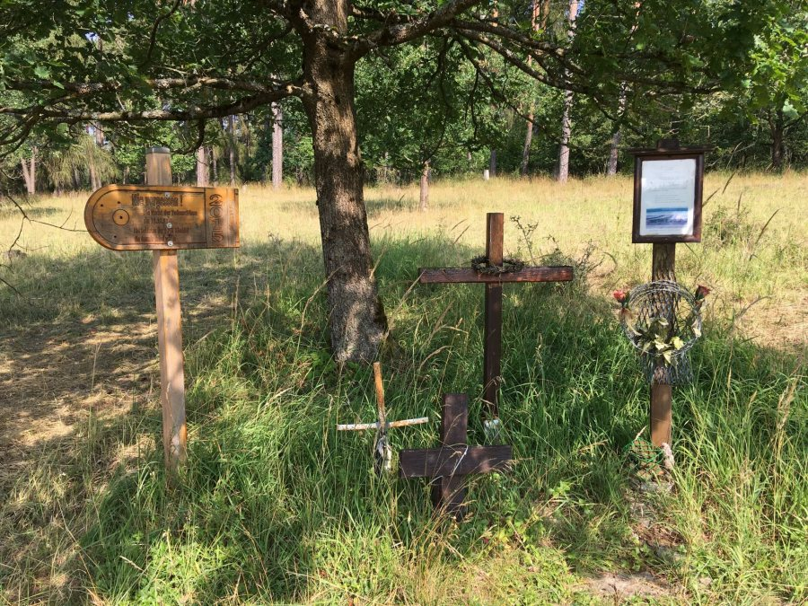 Many Germans believe a nature preserve is an appropriate way to memorialize those who died trying to cross the inner German border; others want any trace of a border removed. (Courtesy of Sonja Pieck)