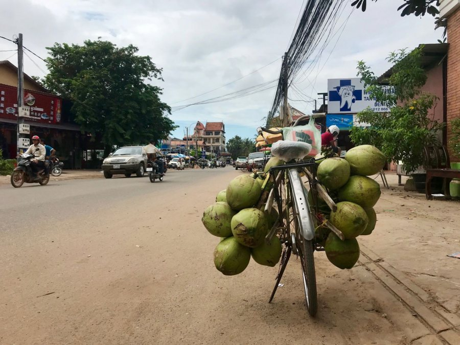O'Shea, Maggie SFS Cambodia Fall 2018 This is a photograph from the streets of Siem Reap (our home base!) in which someone left their coconut-filled bike parked outside a storefront. This photo was selected for the 2019 Barlow Off-Campus Photography Exhibition and shown at the 2019 Mount David Summit on March 29, 2019.