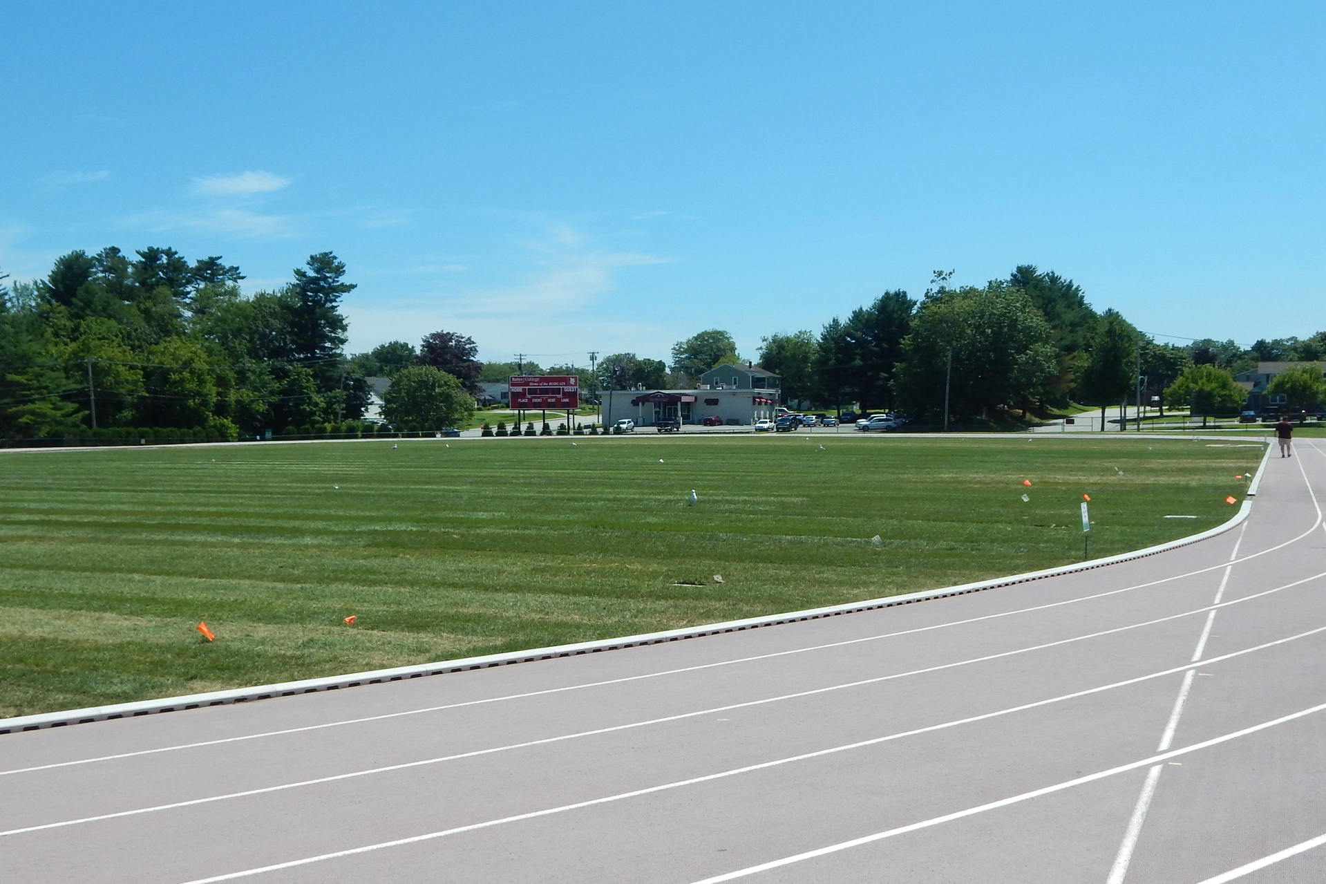 New grass on the Bates soccer field on July 18. (Doug Hubley/Bates College)