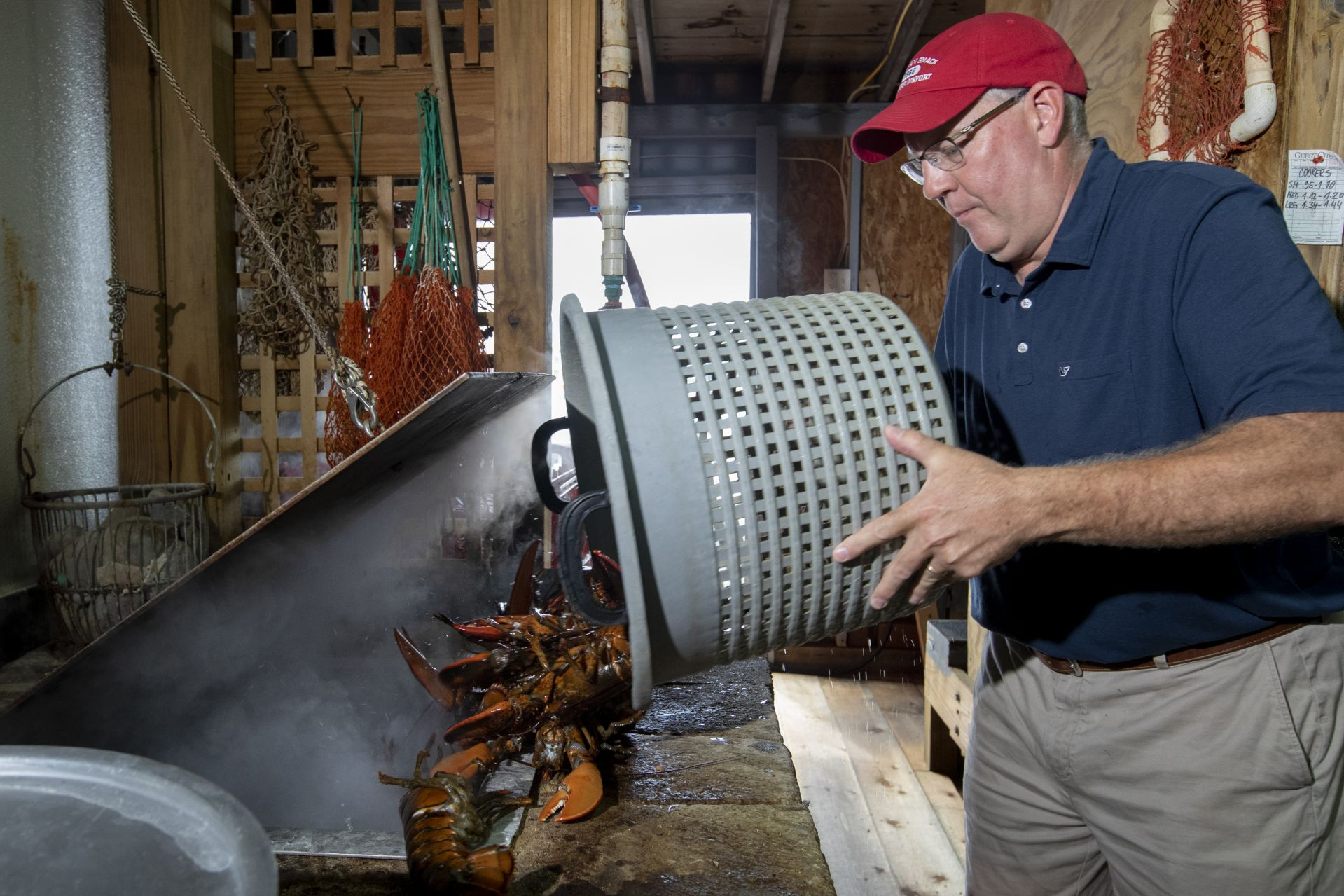 Steve Kingston tips a basket of lobsters, freshly caught in nearby waters, into a boiling kettle. On a busy summer day, the Clam Shack will go through 1,000 pounds of lobsters. (Phyllis Graber Jensen/Bates College)