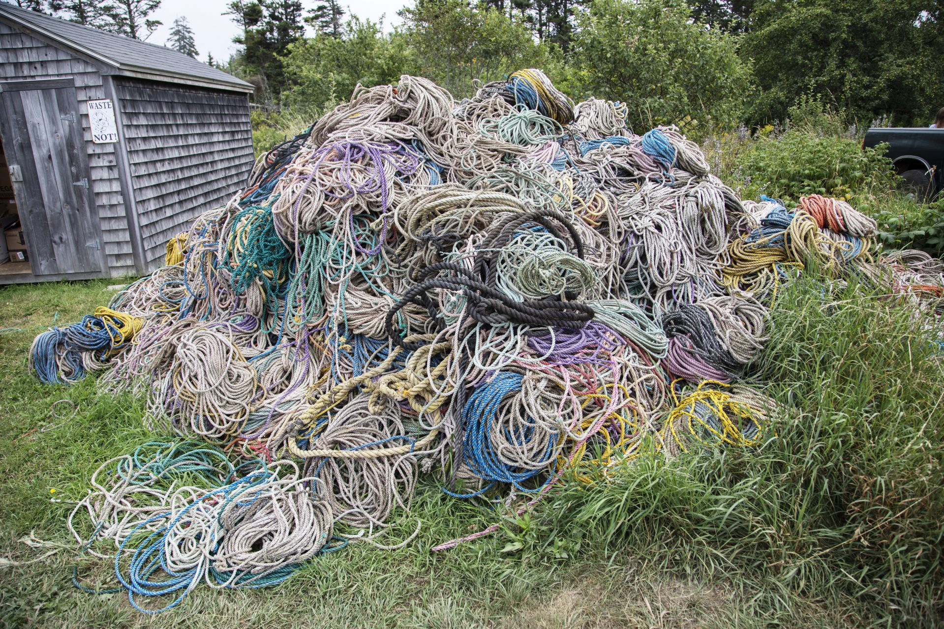 Old rope on Matinicus Island seen on August 7, 2019.A book author and essayist, she's been a year-round resident of Matinicus Island for more than 30 years, starting as a teacher and now a leading island citizen involved in many island issues.
