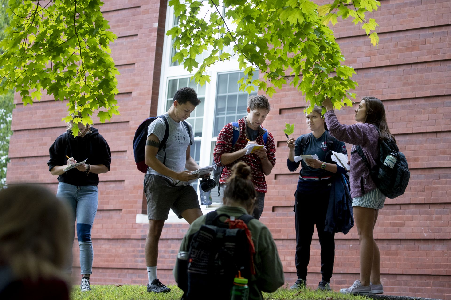 Outside Libbey Forum, students in Assistant Professor of Biology Brett Huggett's dendrology course identify different trees — sugar maple, in this instance — along with catalpa, butternut, red pine, and ginkgo, among others, during a tour of the neighborhood at the foot of Mount David. From left, Bridget Tweedie '21, Eric Viera '20, Zander Schmidt '20, Sarah Delany '20, and Saylor Strugar '21