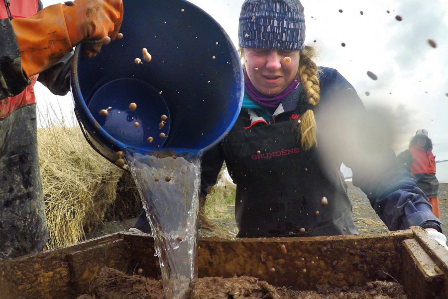 During the screening process, Maya McDonough '22 winces and mud splashes as Jinzhi Wei '20 pours water onto excavated soil. (Tim Leach '99 for Bates College)