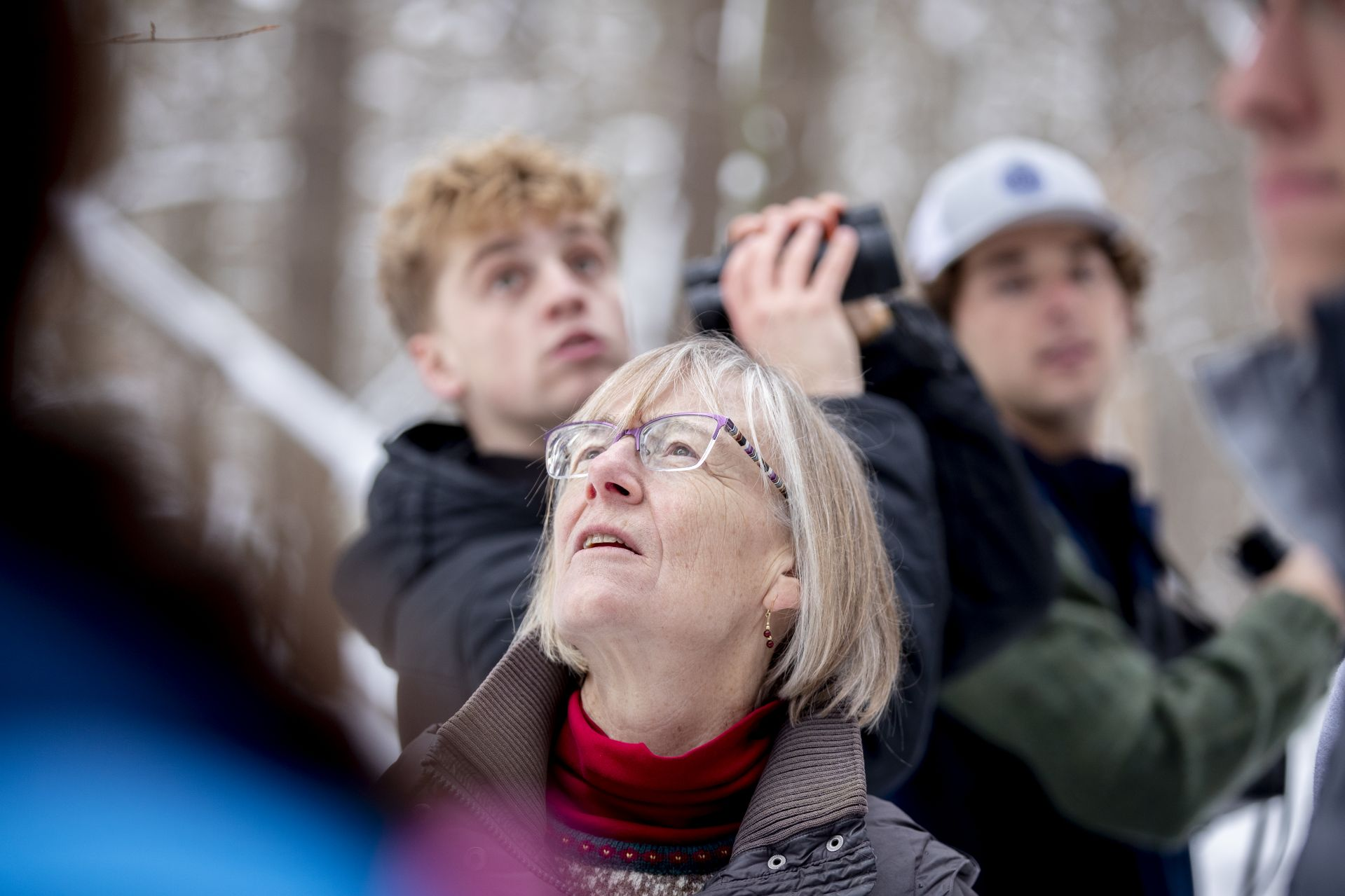 Costlow and her students study a pileated woodpecker in Lewiston's Thorncrag Bird Sanctuary. (Phyllis Graber Jensen/Bates College)