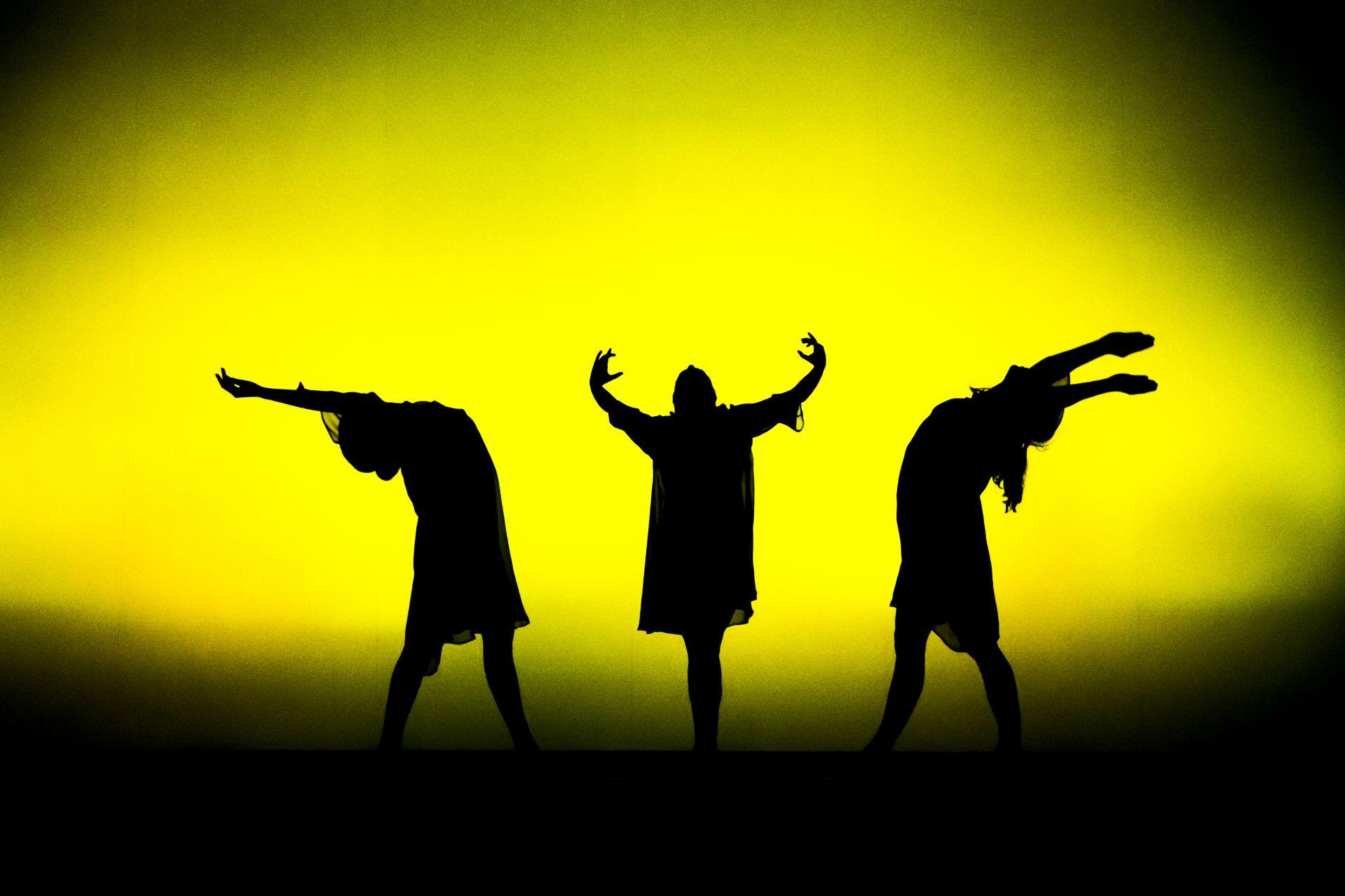 Sankofa presents Invisible Women Performance.