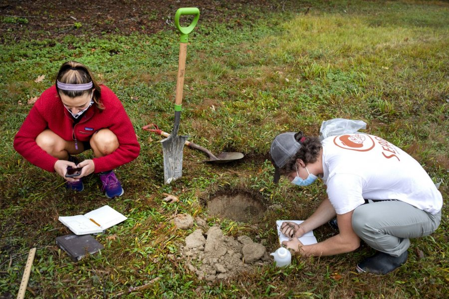 Zoe Knauss '23 of Buffalo, N.Y., who will declare as an ES major, and ES major Sam Gilman '22 of Mendham, N.J., , dig for soil in a field.Prof of Environmental Studies and Christian A. Johnson Prof of Interdisc Studies Holly Ewing and Lecturer in Environmental Studies & Learning Associate in Environmental Studies Camille Parrish take students in the Soils/Lab course for a field trip to Pettengill Farm in Freeport, Maine. A nineteenth century salt-water farm on the estuary of the Harraseeket River, the farm is owned by Freeport Historical Society(FHS). It includes a saltbox house (ca. 1800) on 140 acres of fields, woods, antique apple orchards and salt marsh. Most interesting are the etchings (sgraffitti) found on the plaster walls in the upper chambers of ships, sea monsters, longboats and animals. The farmhouse remains without plumbing, central heat and electricity and is listed in the National Register of Historic Places. Mildred Pettengill was its last resident and lived in the house until 1970.The students are digging up soil and making observations (soil profiles) before putting it back where it came from.ENVR 310 - Soils/LabDepending on one's point of view, soils are geological units, ecosystems, the foundation of plant life, a place for microbes to live, building material, or just dirt. This course takes a scientific perspective and explores the genesis of soils, their distribution and characteristics, and their interaction with plants. Field studies emphasize description of soils, inferences about soil formation, and placement within a landscape context. Labs investigate the chemistry of soils and their role in forestry and agriculture.