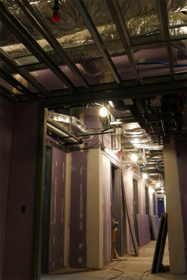 The Bonney center basement is home to the vivarium, a section of which appears here. (Doug Hubley/Bates College)