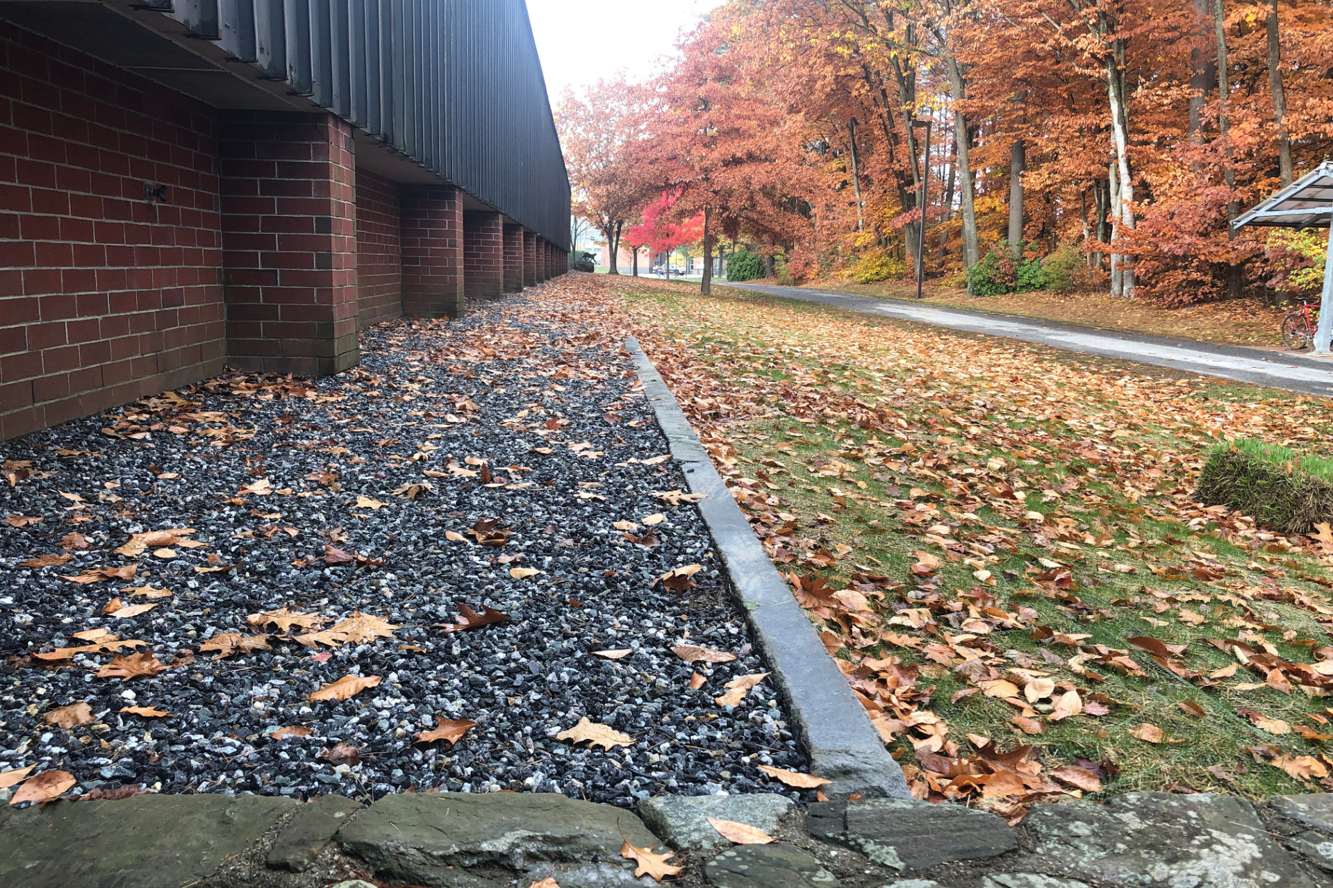 Merrill Gym looms over the newly widened gravel drip edge. At center is a new retaining wall built from salvaged granite curbing. Grass has been reseeded at right. (Jay Burns/Bates College)