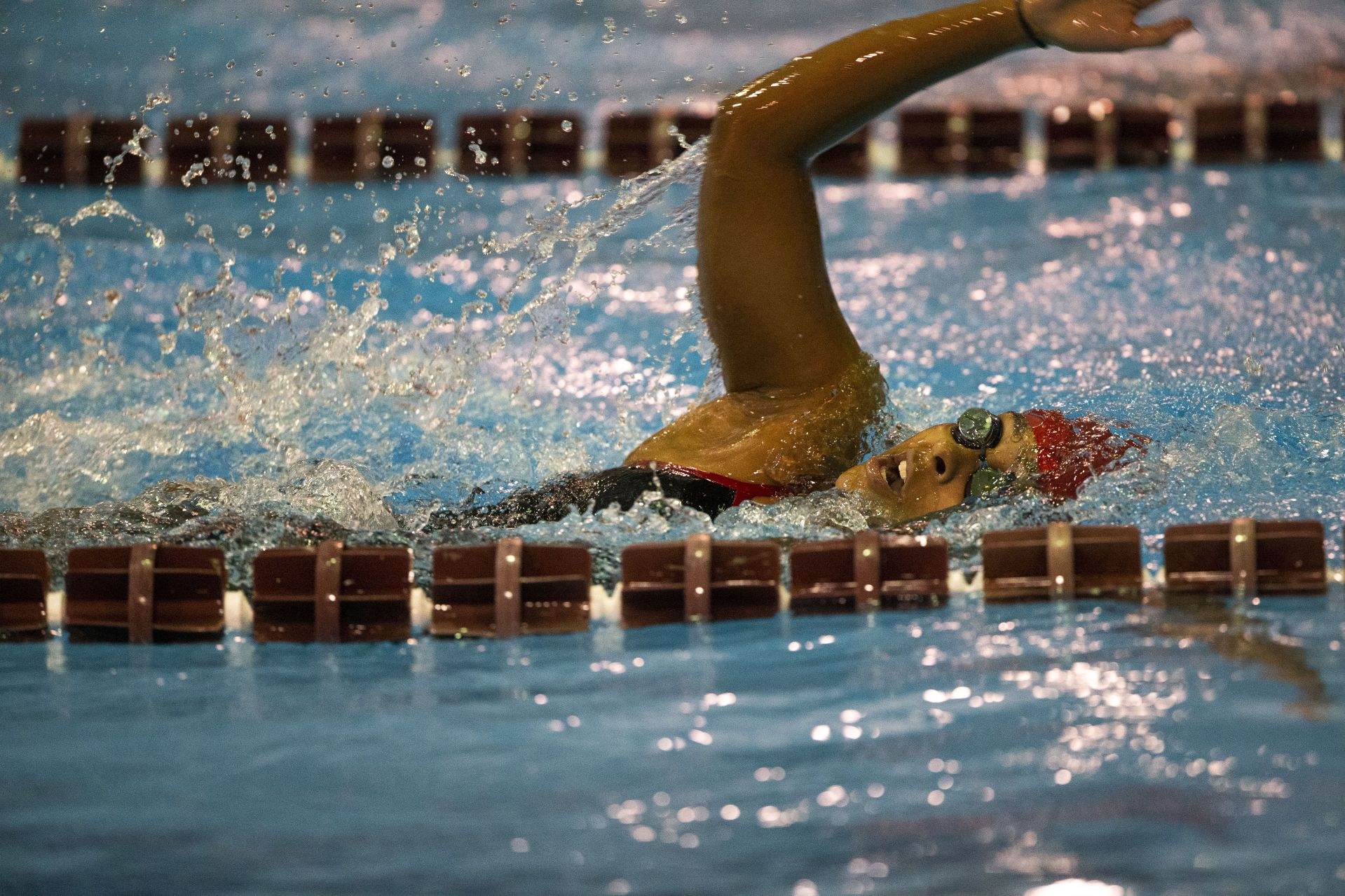 Bates Swimming and Diving hosts Middlebury on January 12, 2020.