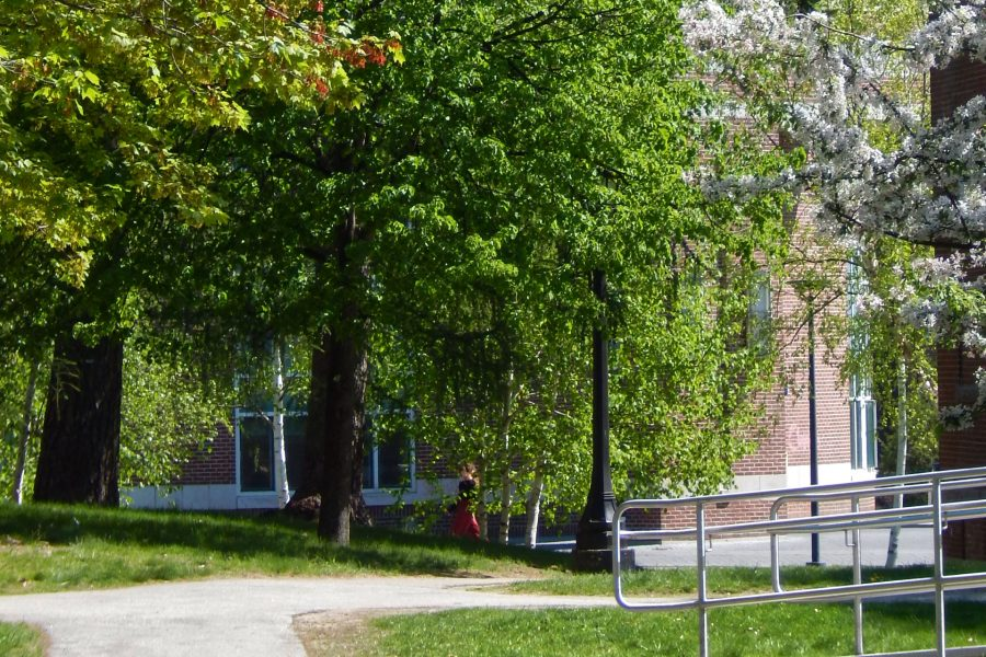 The familiar path from the Historic Quad toward Pettengill Hall, in the background, will be closed for a year as Dana Chemistry Hall (outside the frame at left) is renovated. (Doug Hubley/Bates College)