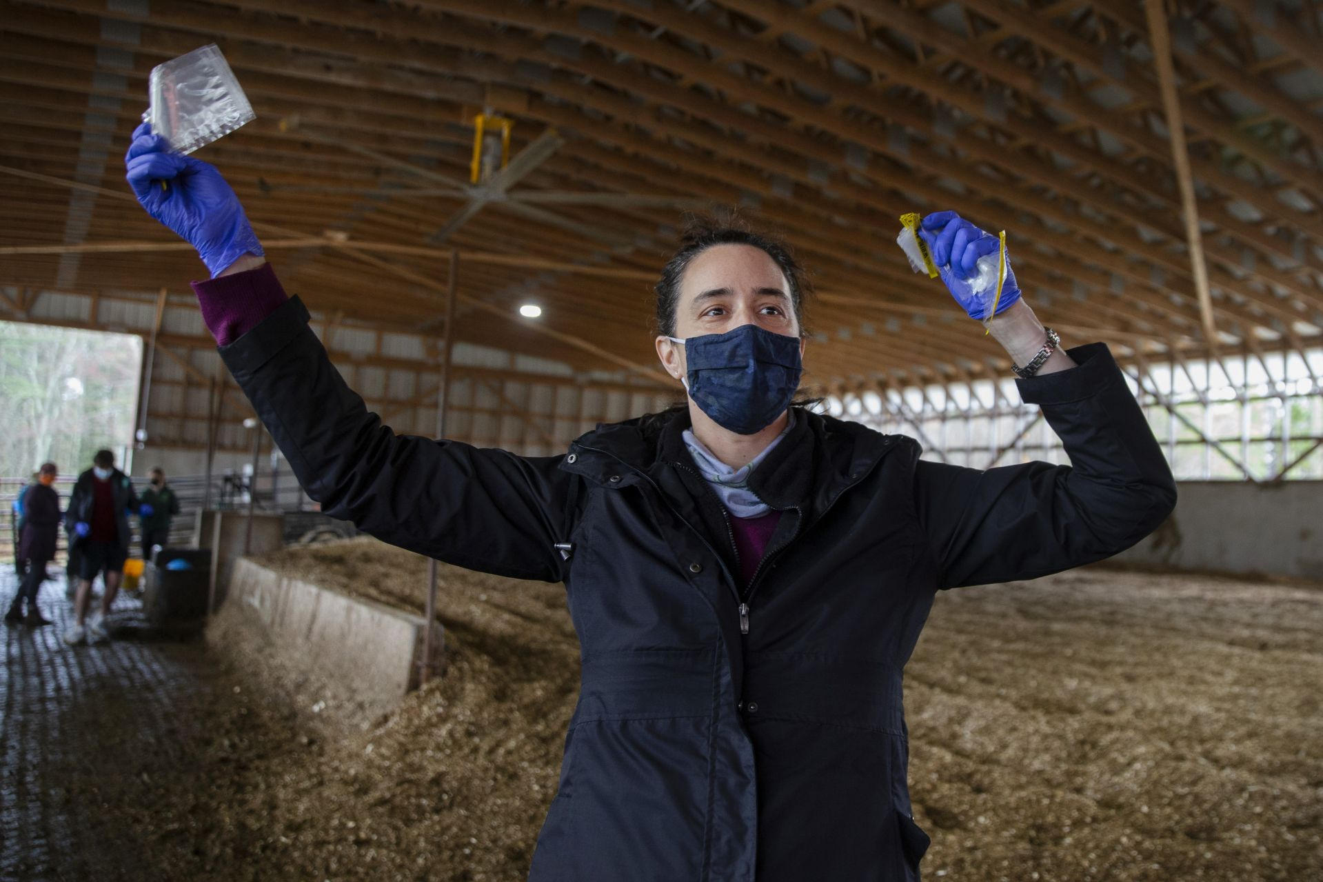 Holding sample bag), Lecturer in Biology Louise Brogan gestures to students at one end of the barn. (Phyllis Graber Jensen/Bates College)