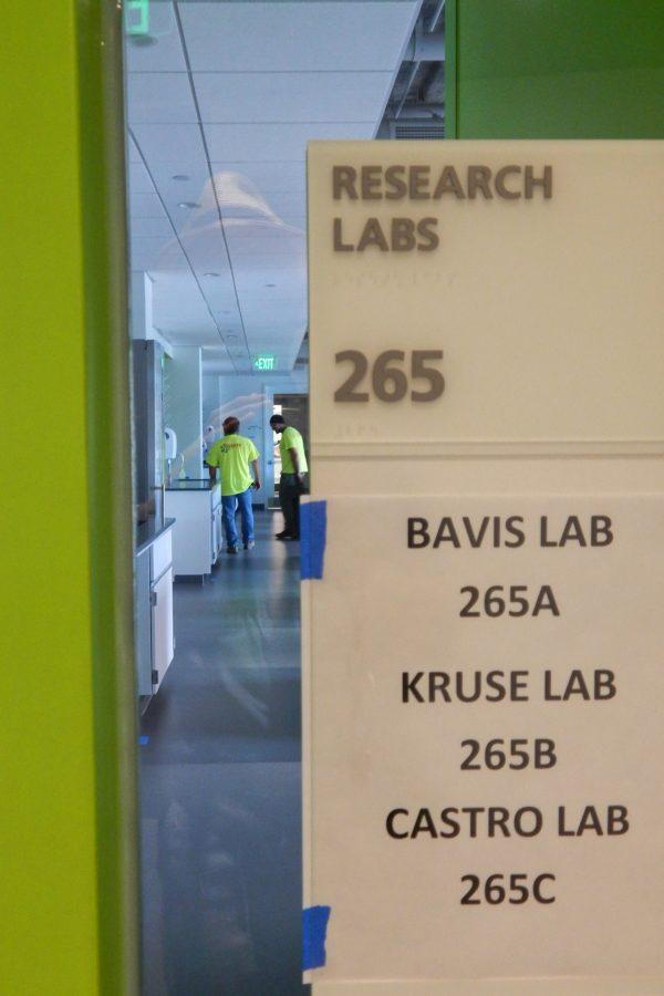 Biologist Ryan Bavis, biologist-neuroscientist Martin Kruse, and neuroscientist Jason Castro share this second-floor lab. (Doug Hubley/Bates College)