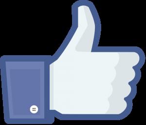 Facebook_like_thumb-300x256
