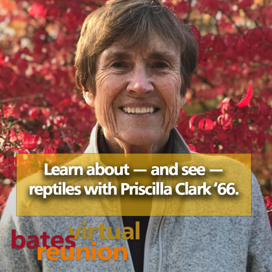 Learn about—and see—reptiles with Priscilla Clark '66.