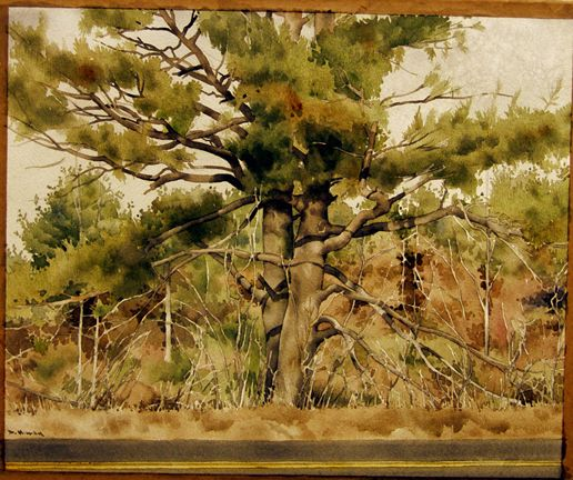 Untitled (Landscape with Two Trees), DeWitt Hardy, Watercolor and pencil, Drawing, 1986.10.3