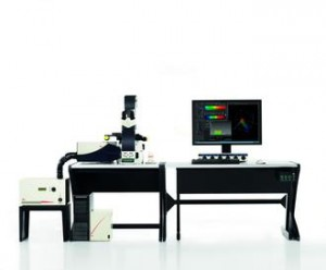Leica SP8 Confocal microscope