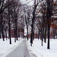 Winter semester has started!