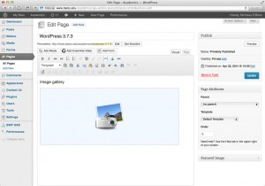 WordPress version 3.7.3