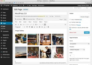 WordPress version 3.9