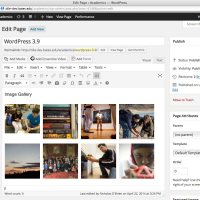 WordPress Upgrade: Version 3.9.1